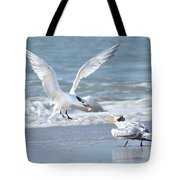 Caspian Tern Feeding Young Tote Bag