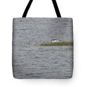 Caspian Terns Tote Bag