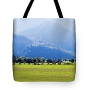 Castle And Cattle Tote Bag