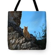 Castle Cat Tote Bag