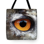 Castle In The Owl's Eye Tote Bag