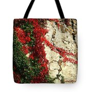 Castle Vines Tote Bag