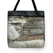Castle Walls Tote Bag