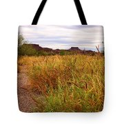 Castolon - A Ghost Town 3 Tote Bag