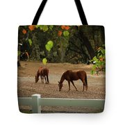 Casual Afternoon Tote Bag