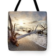 Casualties Of Time Tote Bag