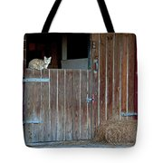 Cat And Barn Tote Bag