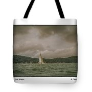 Cat Before The Storm Tote Bag
