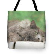 Cat Chillax Tote Bag