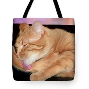 Cat Cleaning At Sunset Tote Bag