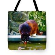 Cat Drinking In Picturesque Garden Tote Bag