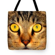 Cat Face Portraiture Tote Bag