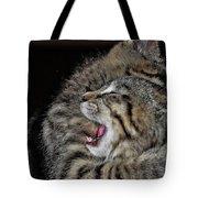 Cat Fight Tote Bag