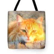 This Cat Has Been Waiting A Long Time For The Mouse  Tote Bag