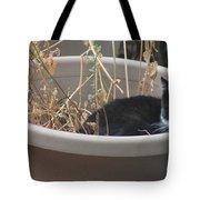 Cat In Flower Pot. Tote Bag