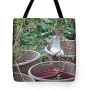 Cat In Flowerpot Tote Bag