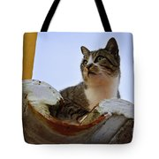 Cat In The Roof Tote Bag