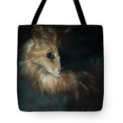 Cat In The Shade Tote Bag
