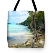 Cat Island Cove Tote Bag