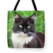 Cat Lawrence Tote Bag