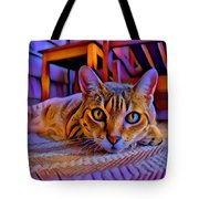 Cat Laying On Braided Rug Tote Bag