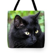Cat Marquis Tote Bag
