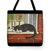 Cat Nap In Window Tote Bag