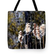 Cat O Eleven Tails Tote Bag