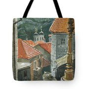Cat Of The Town Of Kotor Tote Bag