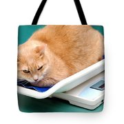Cat On Scale. Tote Bag