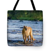 Cat On The River Tote Bag