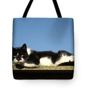 Cat On The Roof Tote Bag