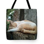 Cat On The Tree Tote Bag