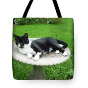 Cat Relaxing In A Birdbath In The Summertime  Tote Bag