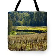 Cat Tails In The Sun Tote Bag