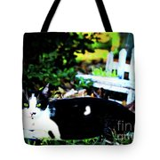 Cat Tale Tote Bag