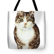 Cat Watercolor Illustration Tote Bag