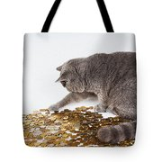 Cat With Coins Tote Bag