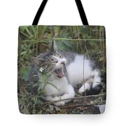 Cat Yawning In The Garden Tote Bag