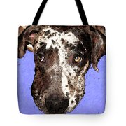 Catahoula Leopard Dog - Soulful Eyes Tote Bag by Sharon Cummings