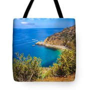 Catalina Island Lover's Cove Picture Tote Bag