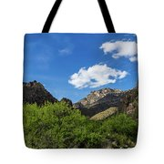 Catalina Mountains In Tucson Arizona Tote Bag