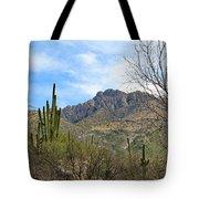 Catalina State Park 2 Tote Bag