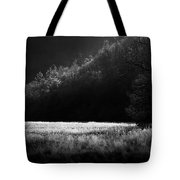 Cataloochee Morning Tote Bag