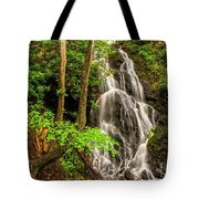 Cataract Falls In Great Smoky Mountains National Park Tote Bag