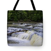 Cataract Falls Phase 1 Tote Bag