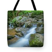 Catawba Stream Cascades At High Shoals Falls In North Carolina Tote Bag by Ranjay Mitra