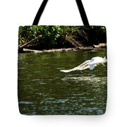 Catch Of The Day Series - 2 Tote Bag