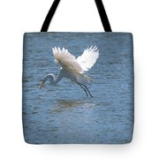 Catch Of The Day Series - 3 Tote Bag