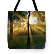 Catch Some Rays Tote Bag
